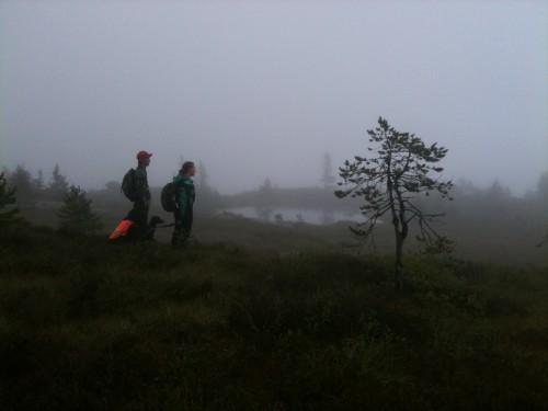 Skogsfuglprøve Kongsberg 25.08.10
